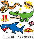 危険生物1 29966343