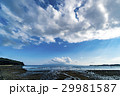 干潟 有明海 海の写真 29981587