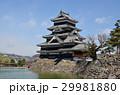 松本城 29981880