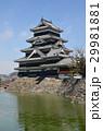 松本城 29981881