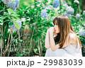 紫陽花と若い女性 29983039