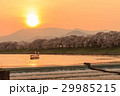一目千本桜 桜並木 桜の写真 29985215