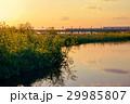 多摩川 高架橋 夕暮れの写真 29985807