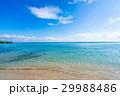 沖縄県 沖縄 夏の写真 29988486