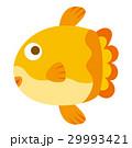 マンボー 魚 白バックのイラスト 29993421