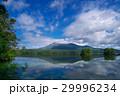 大沼 風景 北海道の写真 29996234