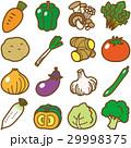 野菜 29998375