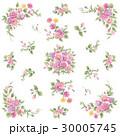 ボタニカル柄 花柄 ベクターのイラスト 30005745