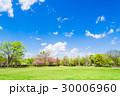 公園 広場 青空の写真 30006960