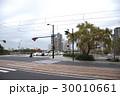 鶴見橋のシダレヤナギ 30010661