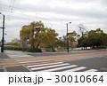 鶴見橋のシダレヤナギ 30010664