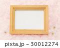 額縁と桜の花びら  一面花びらバック  30012274