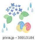 梅雨 雨 かたつむりのイラスト 30013184