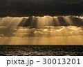 光のカーテン 30013201