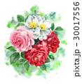 花 バラ 水彩のイラスト 30017556