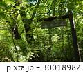 九州 男池 名水の滝 30018982
