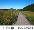 熊本 阿蘇市 外輪山 すすき 男の子 30018984