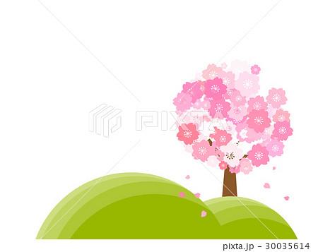 丘にある桜の木 30035614