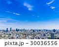 青空と東京シティビュー 30036556