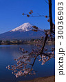 20170420河口湖産屋ヶ崎から桜と富士山 30036903