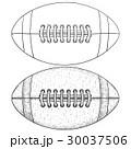 アメリカンフットボール サッカー フットボールのイラスト 30037506