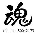 魂 筆文字 文字のイラスト 30042173