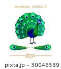 孔雀 ピーコック 動物のイラスト 30046539