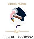 捕食者 捕食 鳥のイラスト 30046552