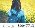 菜の花畑 30047713