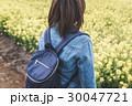 菜の花畑 30047721