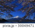 河口湖から青空の桜と富士山 30049471