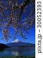 河口湖からの桜と富士山 30052393