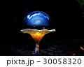 きのこ キノコ 茸の写真 30058320
