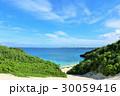 海 ビーチ 沖縄の写真 30059416