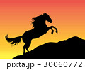 Silhouette of an animal 30060772