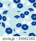 朝顔 背景 花のイラスト 30062162