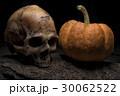 ドクロ かぼちゃ カボチャの写真 30062522