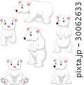 動物 くま クマのイラスト 30062633