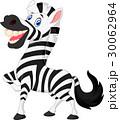 Happy zebra cartoon 30062964