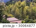 日本の田舎原風景 30064877