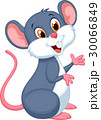 動物 ねずみ ネズミのイラスト 30066849