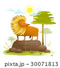 ライオン 動物 自然のイラスト 30071813