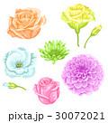 フラワー 花 バラのイラスト 30072021
