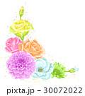 お花 フラワー 花のイラスト 30072022