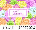 お花 フラワー 花のイラスト 30072028