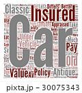 保険 ワード 単語のイラスト 30075343