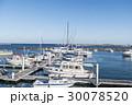 マリーナ ヨットハーバー スパ・マリーナ熱海の写真 30078520