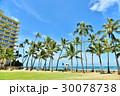 ハワイの休日 30078738