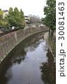 石神井川(北区滝野川・音無くぬぎ緑地付近) 30081463