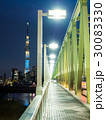 木根川橋 東京スカイツリー ライトアップの写真 30083330
